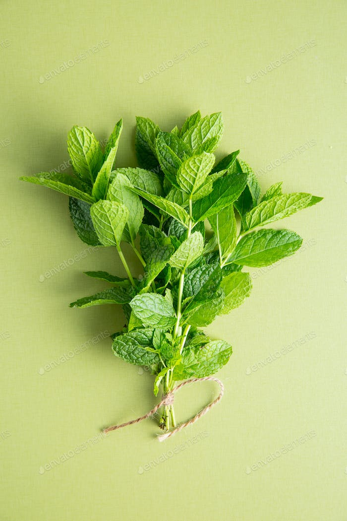 Branch mint leaves.