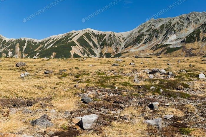 Berg Tate