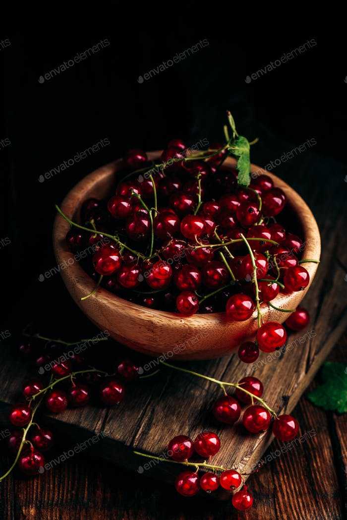 Fresh picked red currants