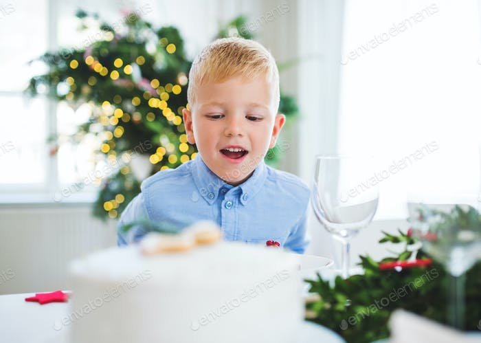 A small boy looking at a cake at home at Christmas time.