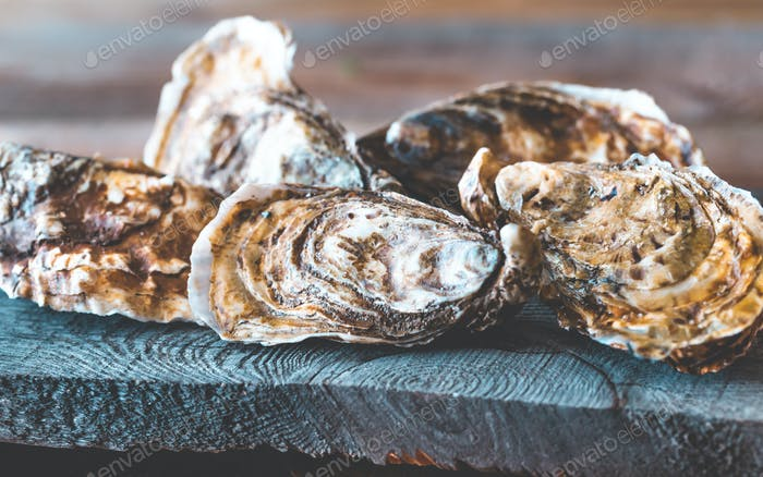 Raw oysters on the board