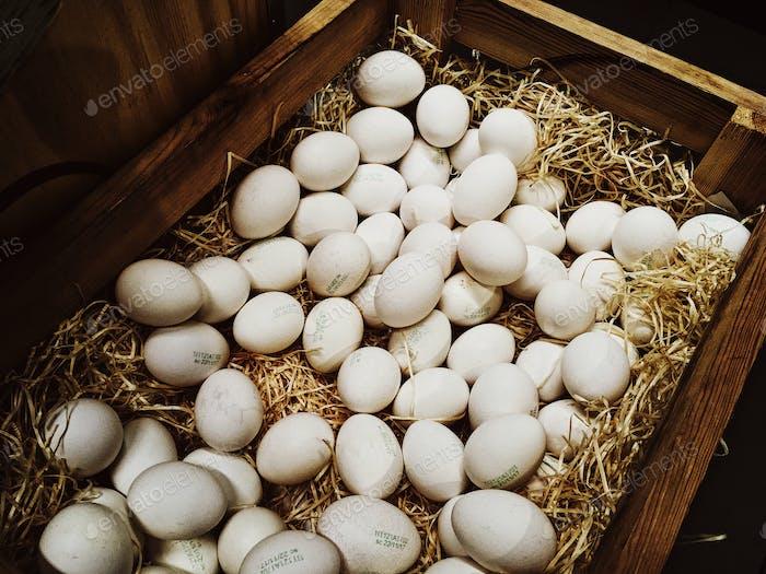 Hühnereier in Holzkiste