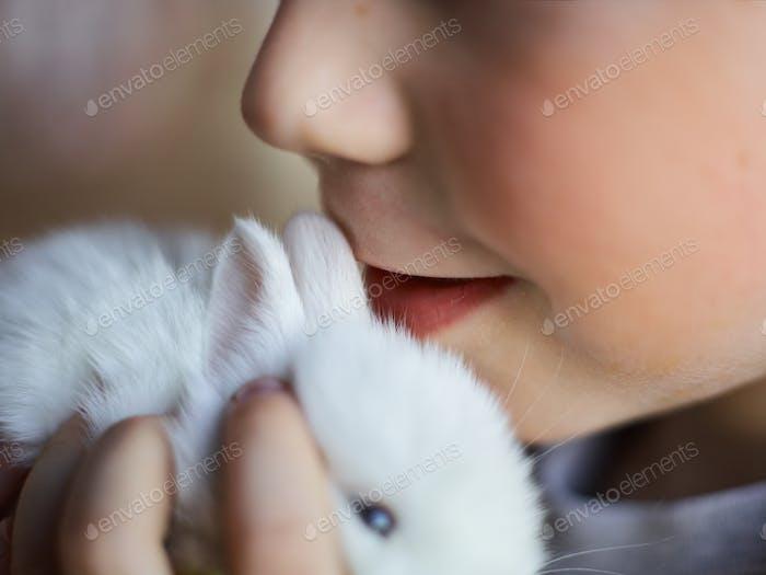 Fluffy companion