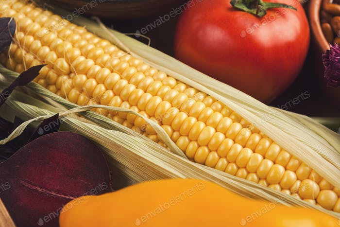 Fresh bright vegetables background