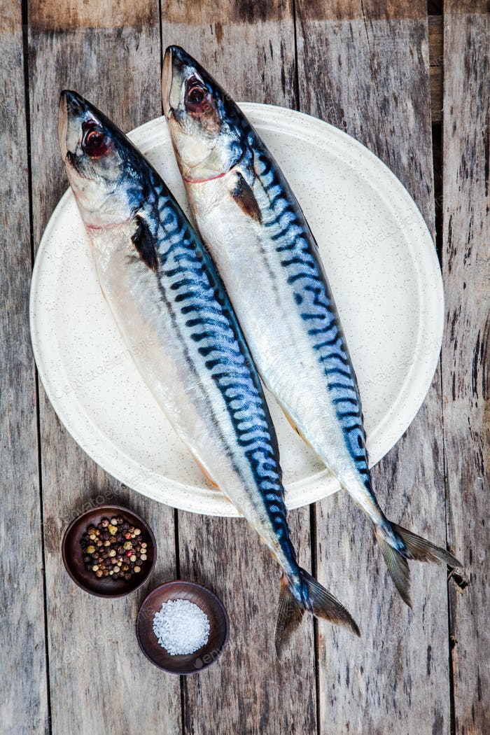 Two raw fresh mackerel fishes on a plate with salt and pepper