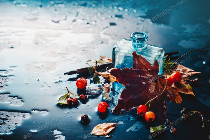 Dark autumn still life with rain,, inwell, maole leaves, berries and cinnamon on a wet background