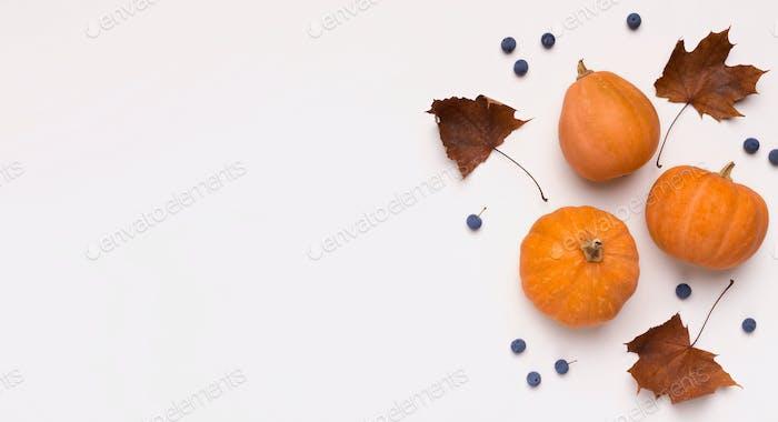 Autumn orange pumpkins with dead leaves on white