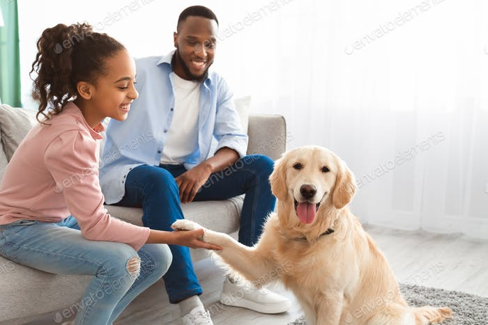 Smiling black girl playing with pet in the living room
