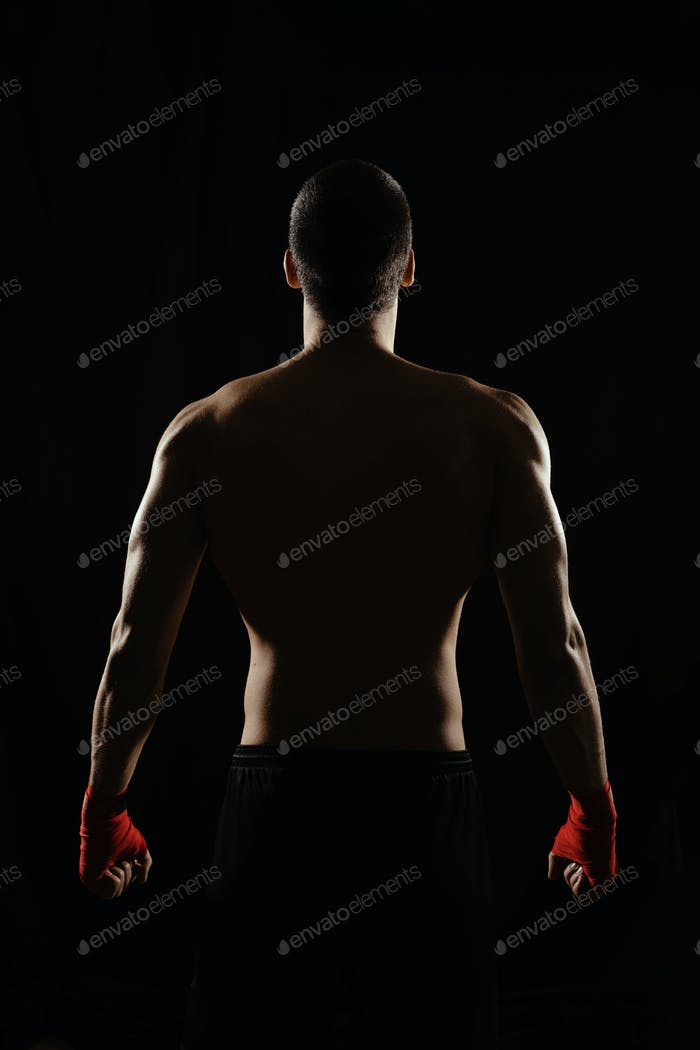 Male boxer posing his powerful back