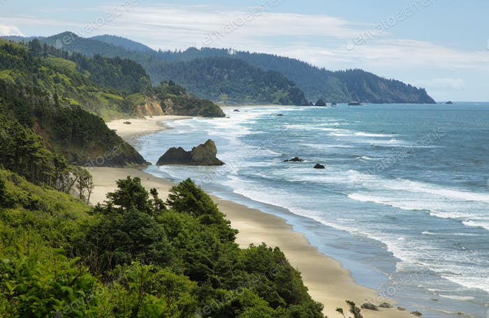 View of wild beach in Oregon