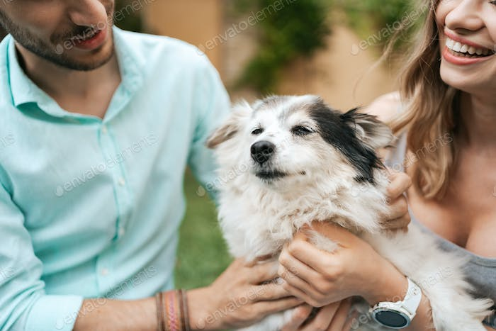 Beautiful couple with a dog on the grass