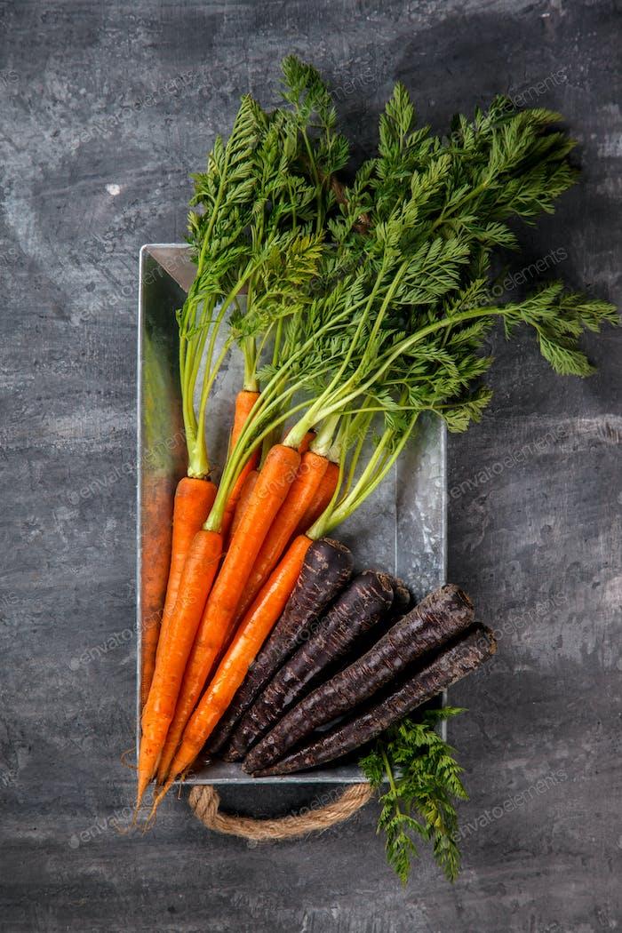 Bündel frische bunte Karotten mit grünen Blättern