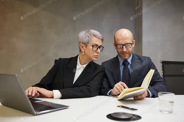 Two Mature Business People Working