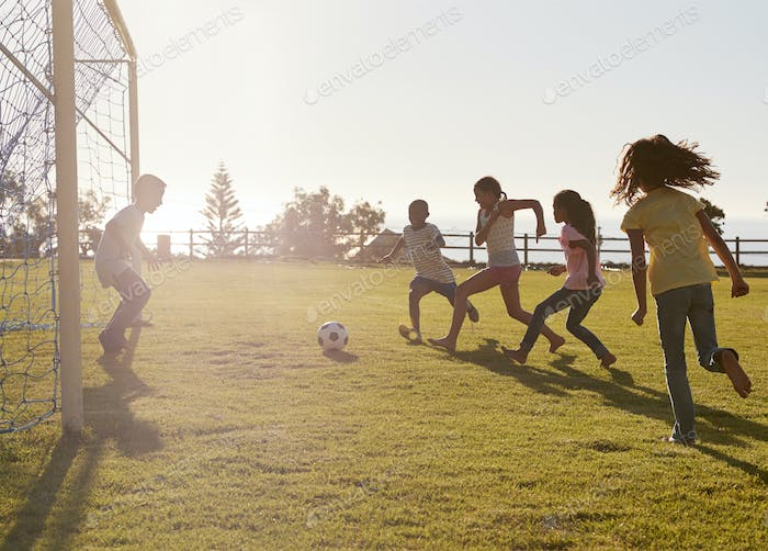 Kids playing football in a park, one in goal, side view