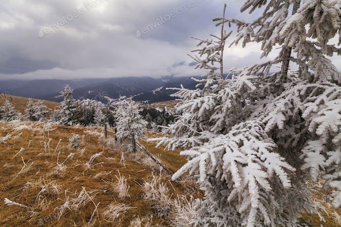 Starker Frost in den Bergen