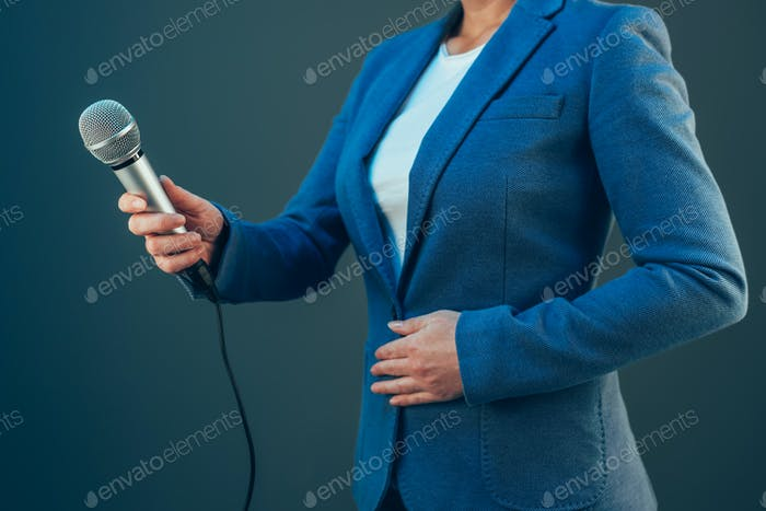 Elegant female journalist conducting business interview