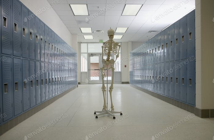 Skeleton in High School Hallway