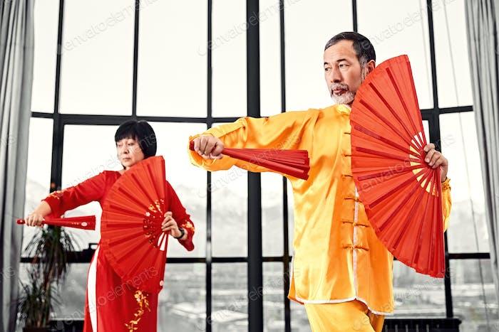 Couple of senior masters practicing qi qong taijiquan