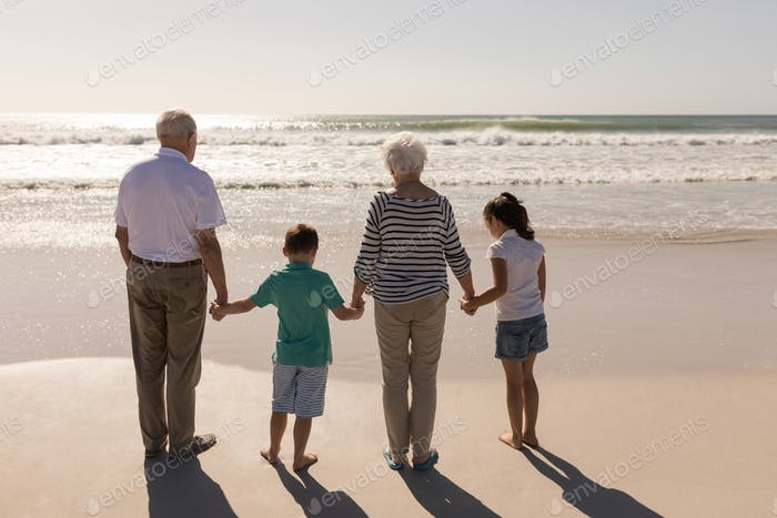Rear view of multi-generation family holding hands and standing on beach in the sunshine