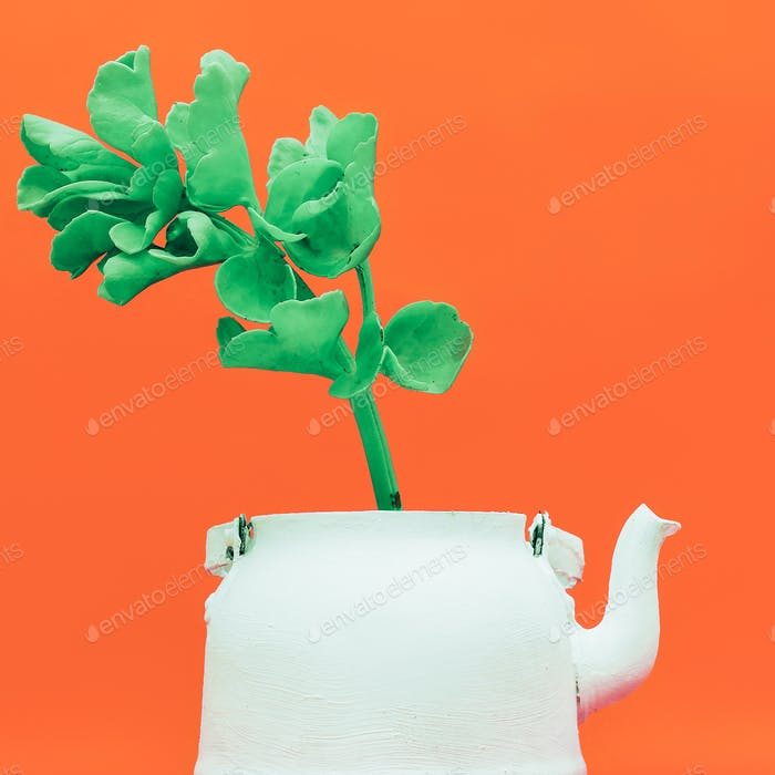 Tropical plant in a teapot. Minimal style design
