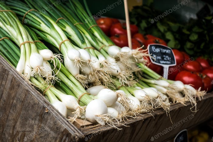 Harvested spring onions for sale