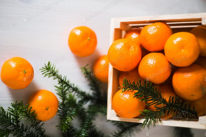 wooden box of fresh mandarin fruits with fir branch