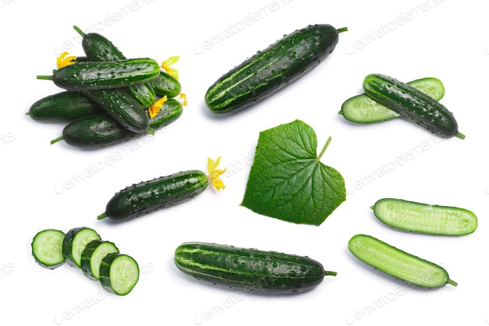 Set of cucumbers, top view, paths