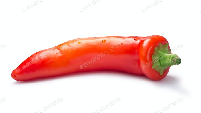 Whole ripe Hot wax or paprika pepper, paths