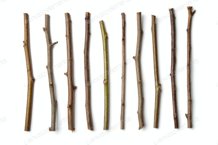 Row of dry wooden twigs