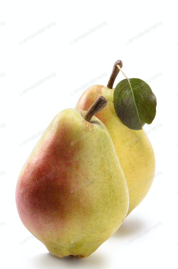reife Birnenfrüchte