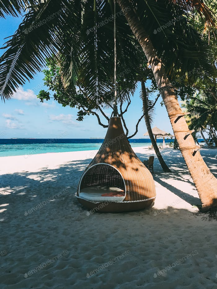Maldives island luxury resort palm tree with hanging hammock