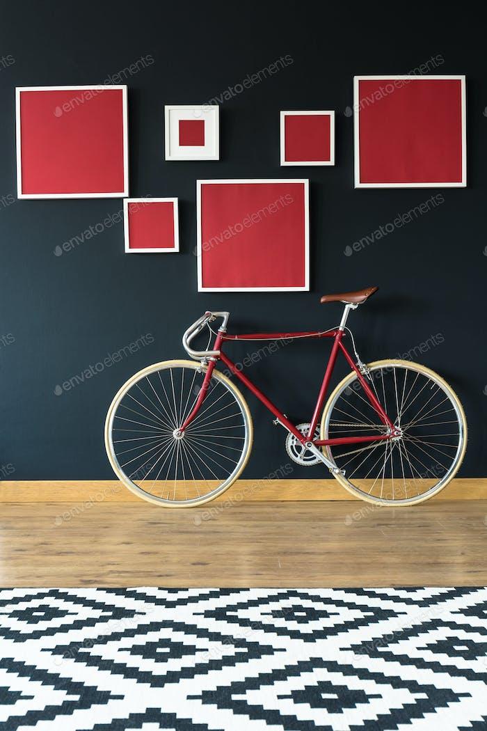 Bike in apartment