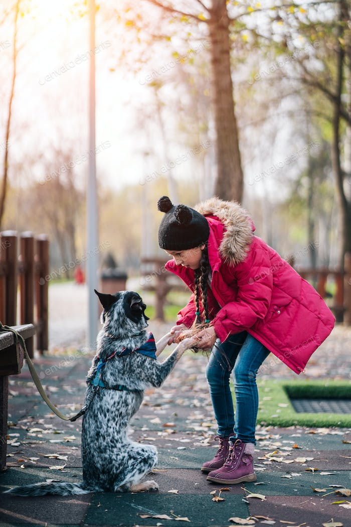 Girl child playing with dog in autumn sunny park, leaf fall