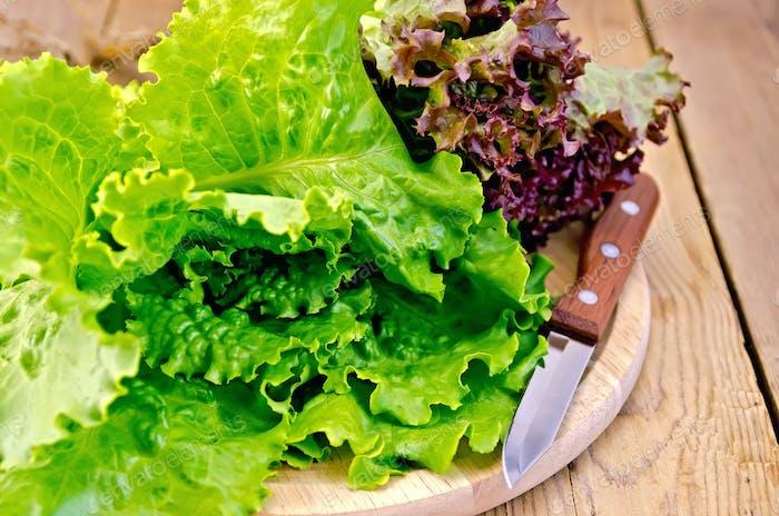 Salat grün und rot mit einem Messer an Bord