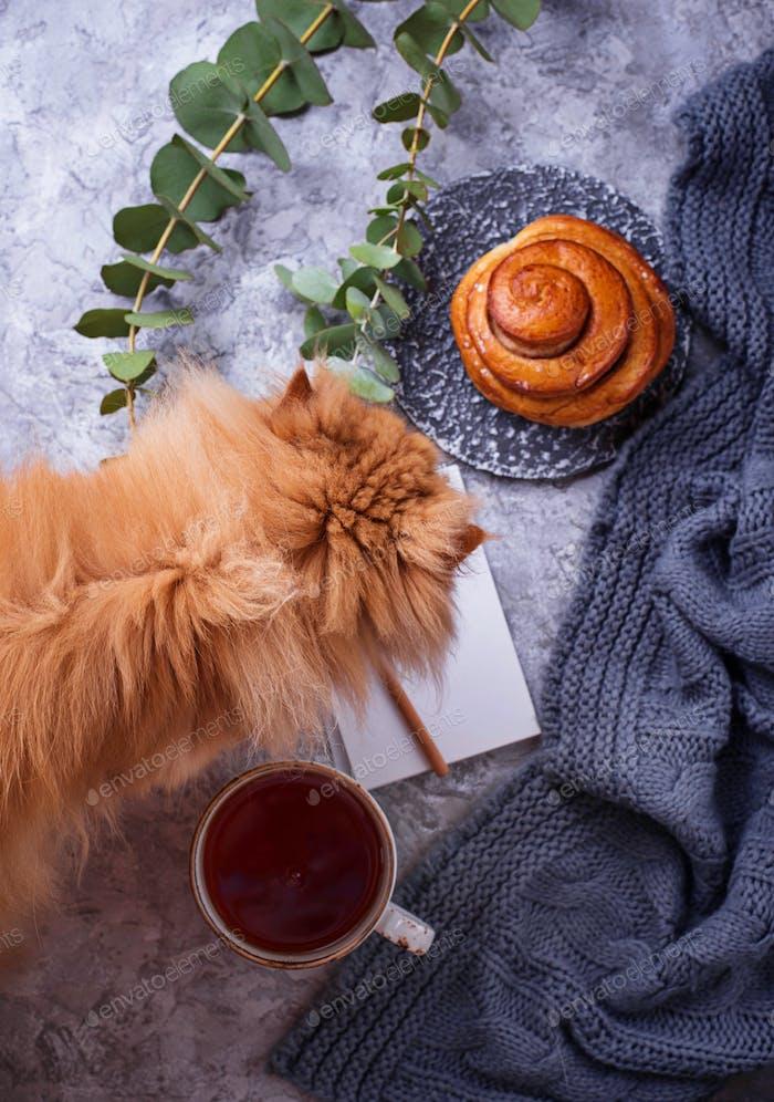 Feminine workspace with bun, cup of tea, notebook and cat