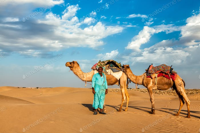Cameleer camel driver with camels in Rajasthan, India