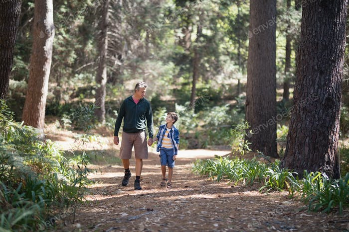 Father and son walking amidst trees in forest