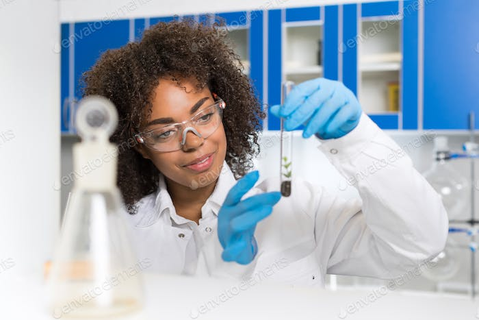 Female Laboratory Scientist Examining Plant Sample In Test Tube, Work In Genetics Lab