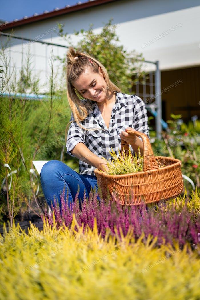 The garden center customer chooses plants to buy