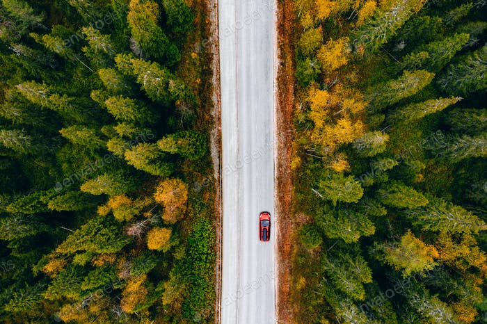 Aerial view of rural road with red car in yellow and orange autumn forest