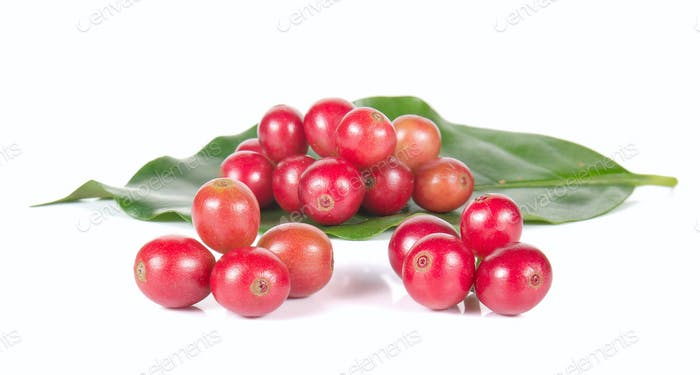 Fresh coffee beans,Fresh red beans on white background.