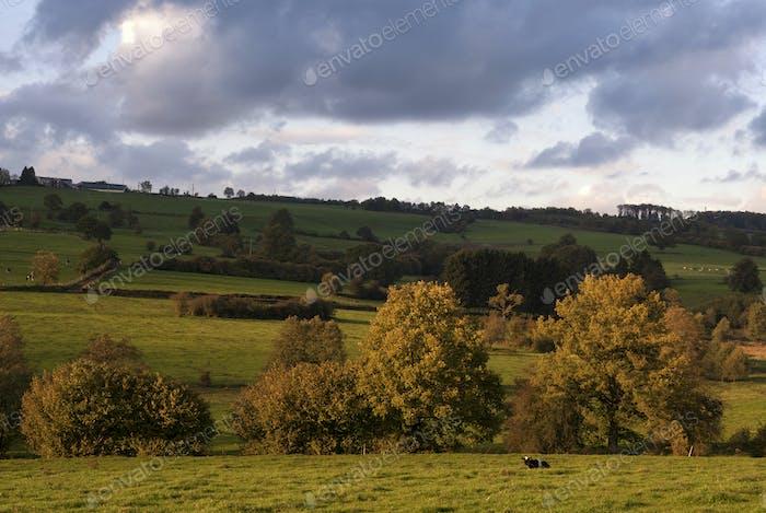Landscape near Stavelot