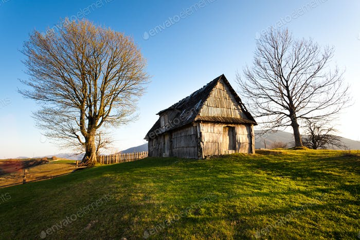 Wooden barn on hill with two trees