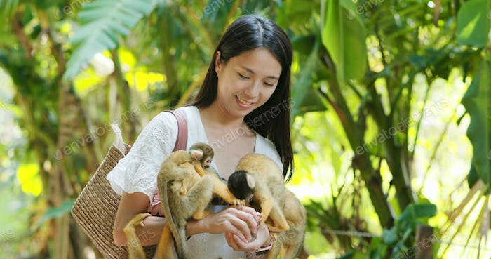 Woman feed Squirrel Monkey in zoo park