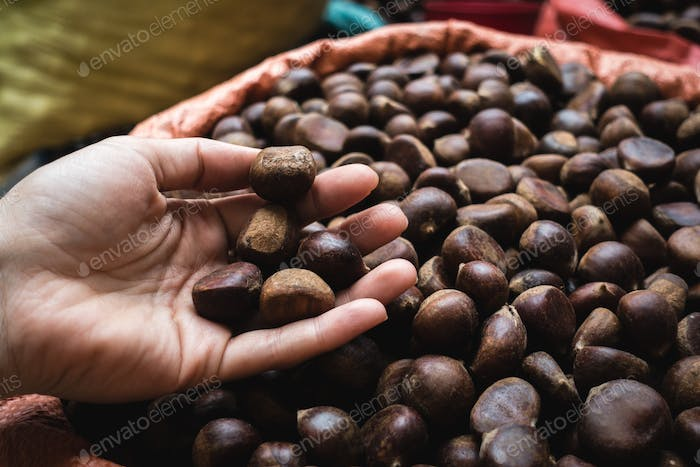 Lady picking chestnuts at a Vietnamese farmers market