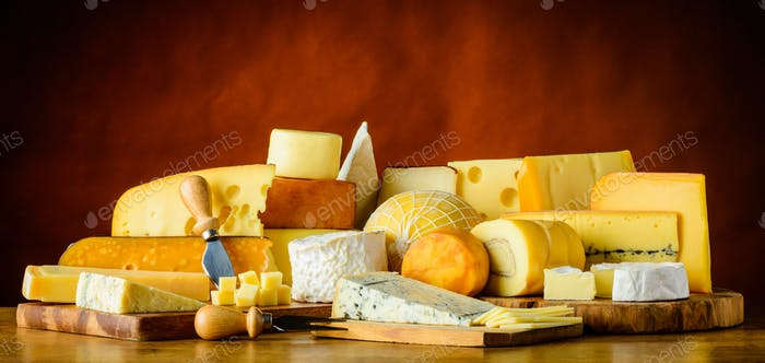 Cheese in Still Life