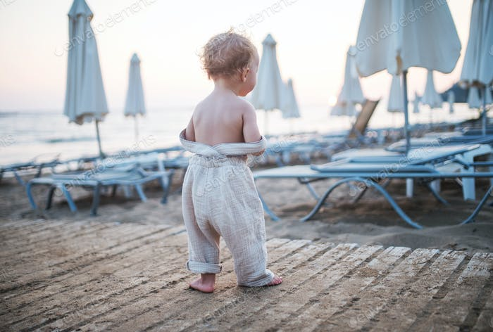 A rear view of small toddler girl walking on beach on summer holiday.