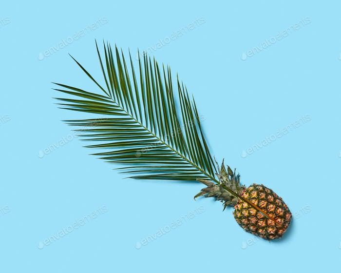 Composition from juicy half of pineapple and green palm leaf on