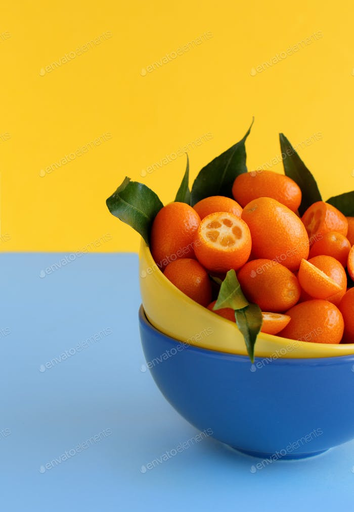 Kumquat fruits on a blue and yellow background