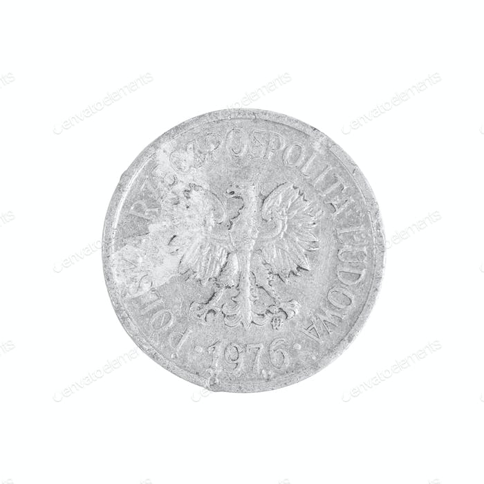 Polish coin close up.